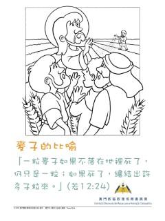 乙年四旬期第五主日——麥子的比喻